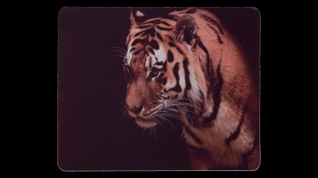 Tigerhuvud framsida