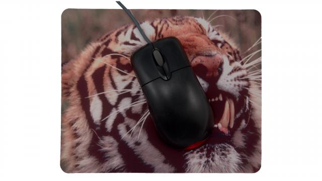 Rytande tiger framsida med mus
