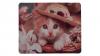 Katt med hatt framsida